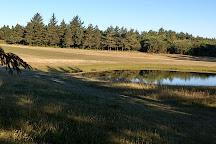 Esbjerg Golf Club, Esbjerg, Denmark