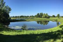 North Ponds Park, Webster, United States