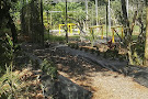 Caribbean Botanical Garden