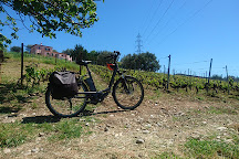 Nice Cycle Tours, Nice, France