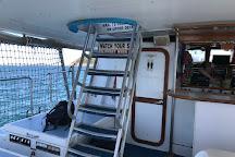 Moonshadow - TQC Cruises, Nelson Bay, Australia