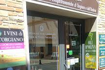 WonderUmbria, Torgiano, Italy