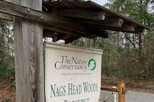 Nags Head Woods Preserve, Kill Devil Hills, United States