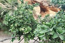 Il Giardino della Kolymbethra, Agrigento, Italy