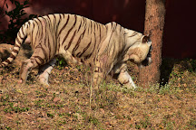 Indira Gandhi Zoological Park, Visakhapatnam, India