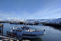 Laki Tours, Grundarfjorour, Iceland
