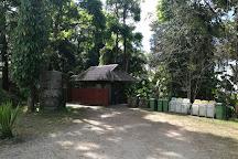 Phu Langka Forest Park, Pong, Thailand