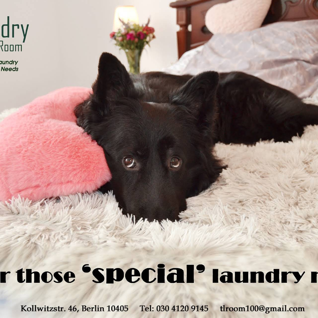 - The Laundry Room - Laundry Service In Berlin