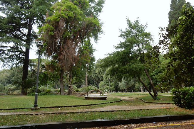 Visit Terrazza Del Pincio On Your Trip To Rome Or Italy