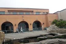 Birch Aquarium at Scripps Institution of Oceanography, La Jolla, United States
