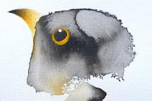 yellowbird gallery, Birsay, United Kingdom