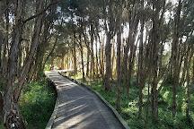 Rhyll Inlet State Wildlife Reserve, Rhyll, Australia