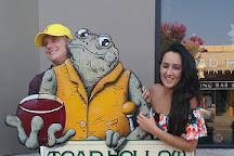 Toad Hollow Vineyards, Healdsburg, United States