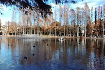 Besshonuma Park, Saitama, Japan