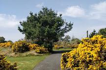 The European Club, Wicklow, Ireland