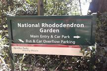 Dandenong Ranges Botanic Garden, Olinda, Australia