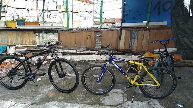 Cycles Oliveira
