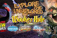 Wookey Hole Caves, Wookey Hole, United Kingdom