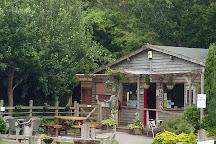 Totnes Rare Breeds Farm, Totnes, United Kingdom