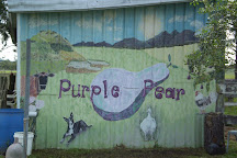 Purple Pear Farm, Anambah, Australia