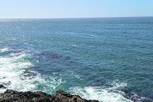 Ainslee's Salt Water Taffy, Depoe Bay, United States
