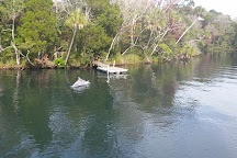 Blue Heaven River Tours, Homosassa, United States