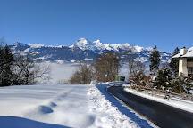Lama- & Alpakahof Triesenberg, Triesenberg, Liechtenstein