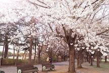 Chiba Kashiwanoha Park, Kashiwa, Japan