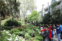 Peony Park, Luoyang, China