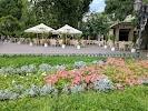 Одесский городской сад на фото Одессы
