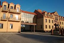 Basilica of Our Lady of Lichen, Lichen Stary, Poland