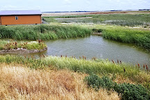 Kansas Wetlands Education Center, Great Bend, United States