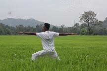 Ella Yoga Hub, Ella, Sri Lanka