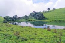 Bhadra Wildlife Sanctuary, Chikmagalur, India