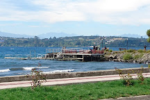 In Puerto Varas, Puerto Varas, Chile
