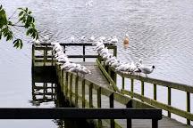 Dungannon Park, Dungannon, United Kingdom