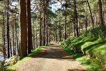 Wicklow Mountains National Park, Glendalough Village, Ireland