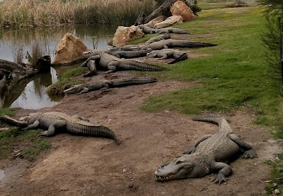 Hunter Valley Zoo