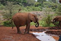 Africa Safariland Tour, Nairobi, Kenya