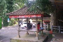 Bunut Bolong, Pekutatan, Indonesia