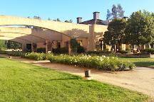 William Cole Vineyards, Casablanca, Chile