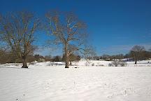 Appleton Farms, Ipswich, United States