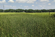 Boundary Creek Natural Resource Area, Moorestown, United States