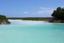Conception Island National Park, Long Island, Bahamas