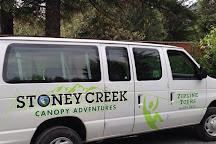 Stoney Creek Canopy Adventures, Seward, United States