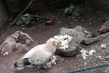 El Zoo La Grandera, Cangas de Onis, Spain
