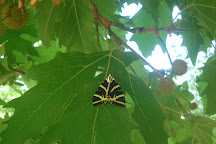 Butterfly Valley, Fethiye, Turkey