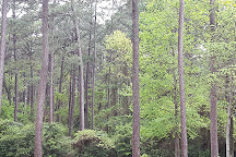 North Toledo Bend State Park, Zwolle, United States