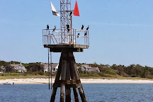 Monomoy Island Excursions, Harwich Port, United States