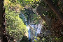 Salmon Creek Falls Trail, Big Sur, United States